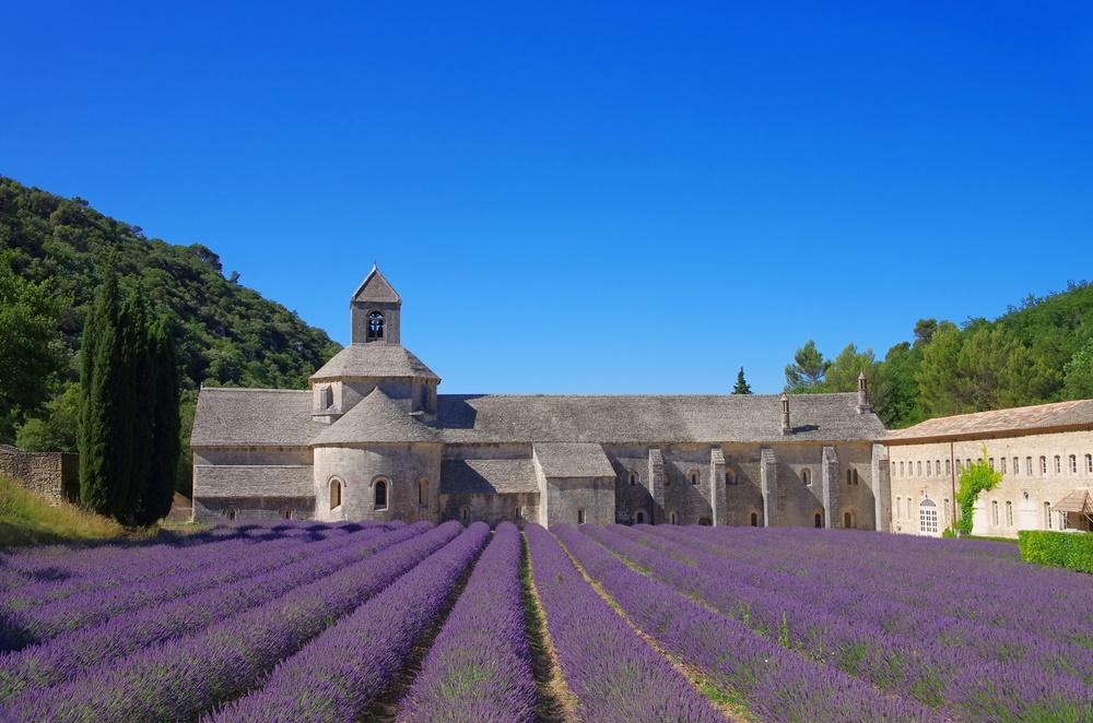 senanque-abbey-lavender